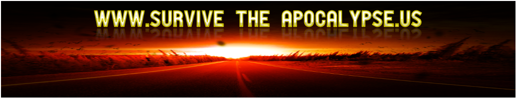 Survive The Apocalypse - How To Survive End Time Terrorist Attacks And More Of The Last Days Tribulation